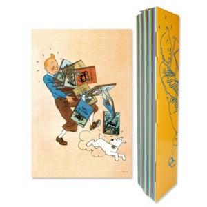 Hergé Moulinsart - Poster / affiche  - Amazonie BD